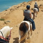 photo-gallery-excursions-Activities-Horseback-Riding_38-1065x437